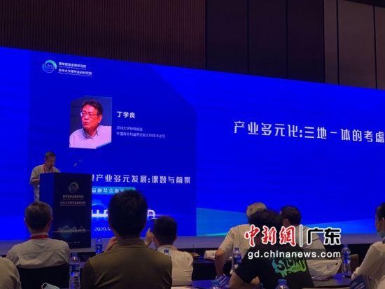 深圳大学特聘教授兼中国海外利益研究院ICOI学术主导丁学良教授在发表主旨演讲。邓媛雯摄影