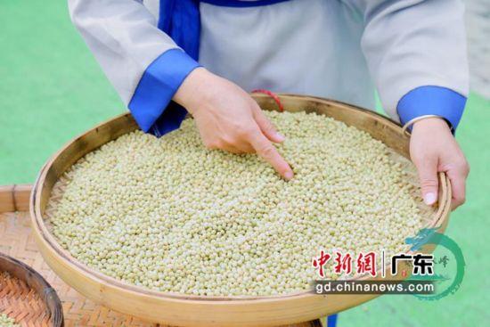 广东年加工2500万吨大豆,稳控全国1/4大豆加工总量,居全国第一。