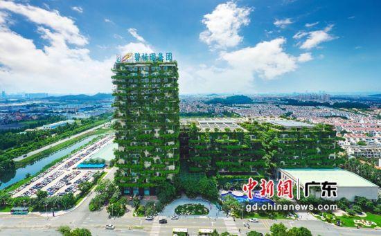 碧桂园总部大楼采用了立体城市设计理念,融入垂直绿化和多维度生态景观系统,合理应用可再生能源、智能化设备以及LED照明系统等技术。图片来源:受访单位供图
