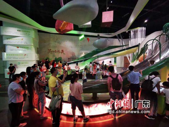 食品药品科普体验馆受游客喜爱。广东科学中心 供图