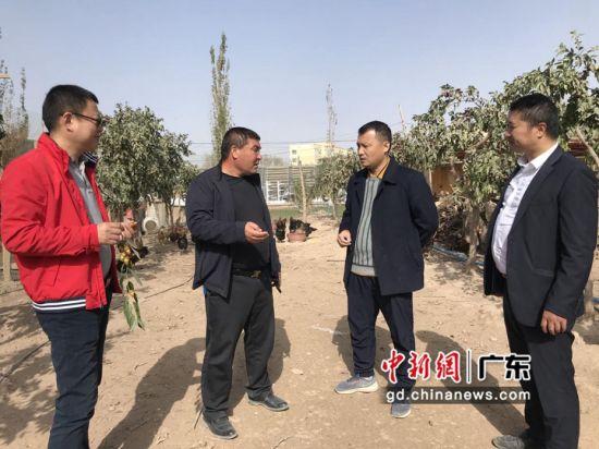 10月17日,广东援疆驻三师图市工作队对艾尼·吐孙的民宿项目进行现场调研。吉秋霞 摄