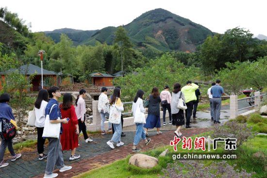 成员考察丰阳镇夏东村。曲洪博、邓其乐 摄