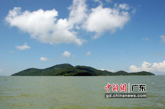 福田红树林自然保护区 主办方供图