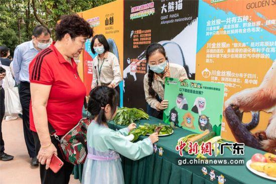 2020年全国暨广东省保护野生动物宣传月活动17日在广州长隆野生动物世界启动。邓泳怡摄影