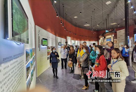 青年团一行走进广州从化。梁素雅 摄