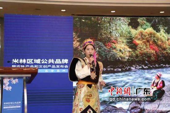 """米林区域公共品牌""""米林印象""""暨农特产品和文创产品发布会在珠海举行。米林供图"""