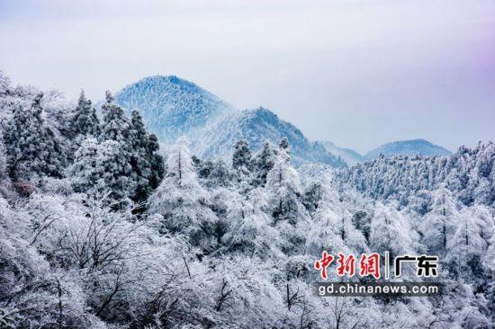 南岳衡山目前银装素裹。通讯员 供图