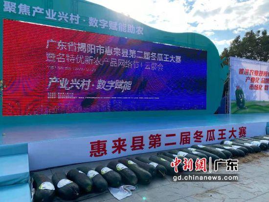 广东惠来举办冬瓜王大比拼 线上线下联动拓宽农产品销路