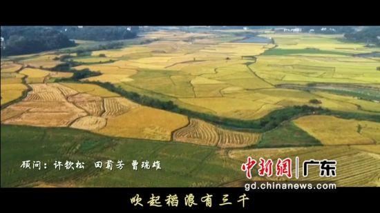 新創歌曲《美麗的田野》向袁隆平院士致敬