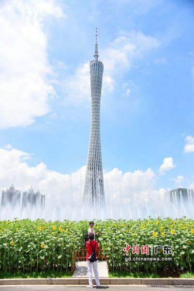 市民在花田前拍照。 作者 文国辉(实习生)