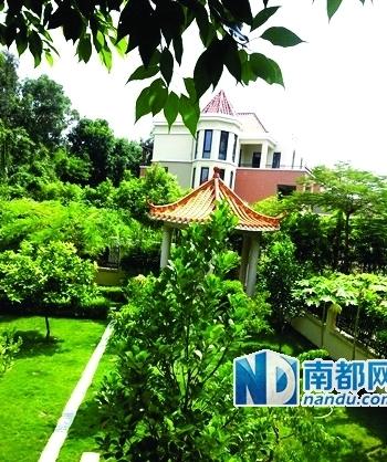 深圳两豪宅业主因狗只问题对揭官员背景 互指贪腐